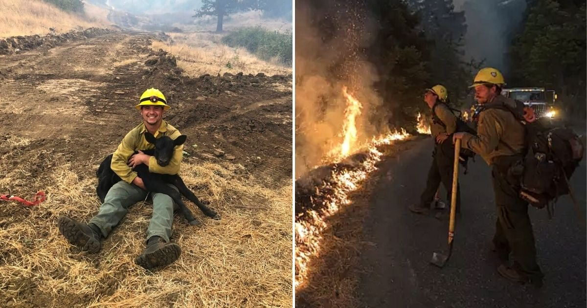 banner5.jpg?resize=1200,630 - Firefighters Rescue Calf While Fighting Devastating Wildfires