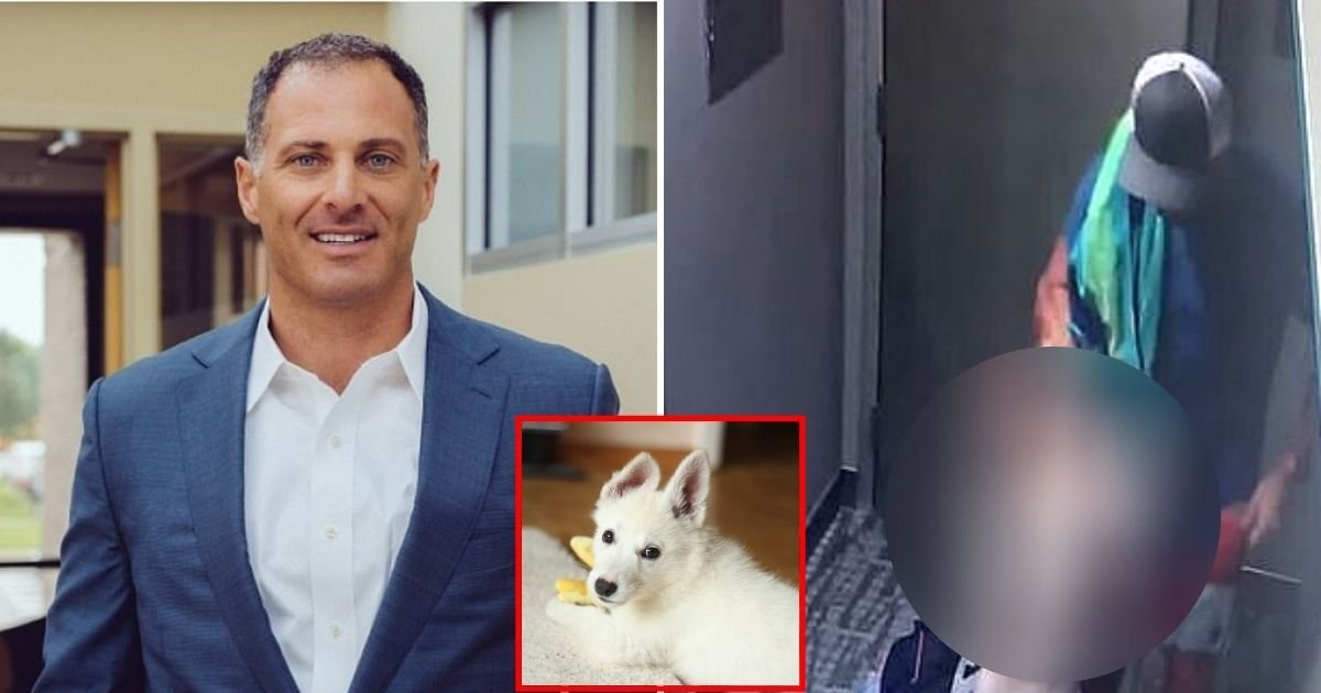 bici.jpg?resize=412,232 - CEO Issued A Lengthy Apology After He Was Caught Attacking A Four-Month-Old Puppy