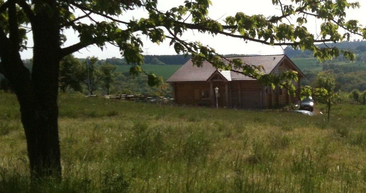 bois.jpg?resize=1200,630 - Moselle: une femme de 43 ans a été retrouvée morte dans un bois