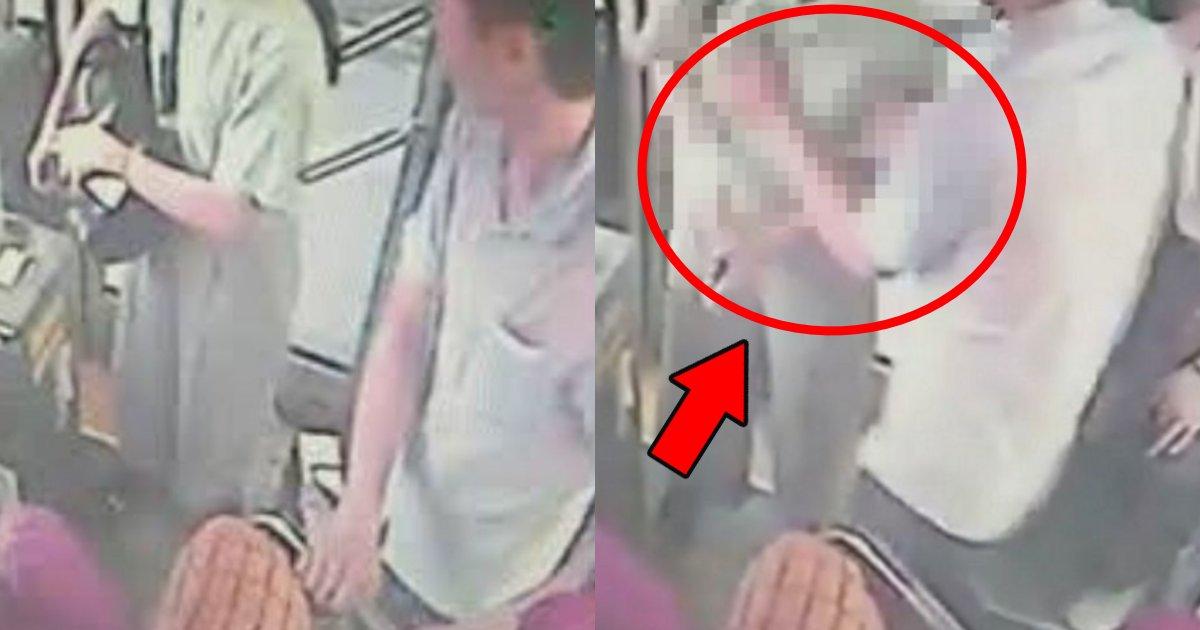 bus 1.png?resize=412,232 - バスの中で下着をつけていない女性に興奮しあからさまに胸を触り押し倒した男が相当ヤバい件