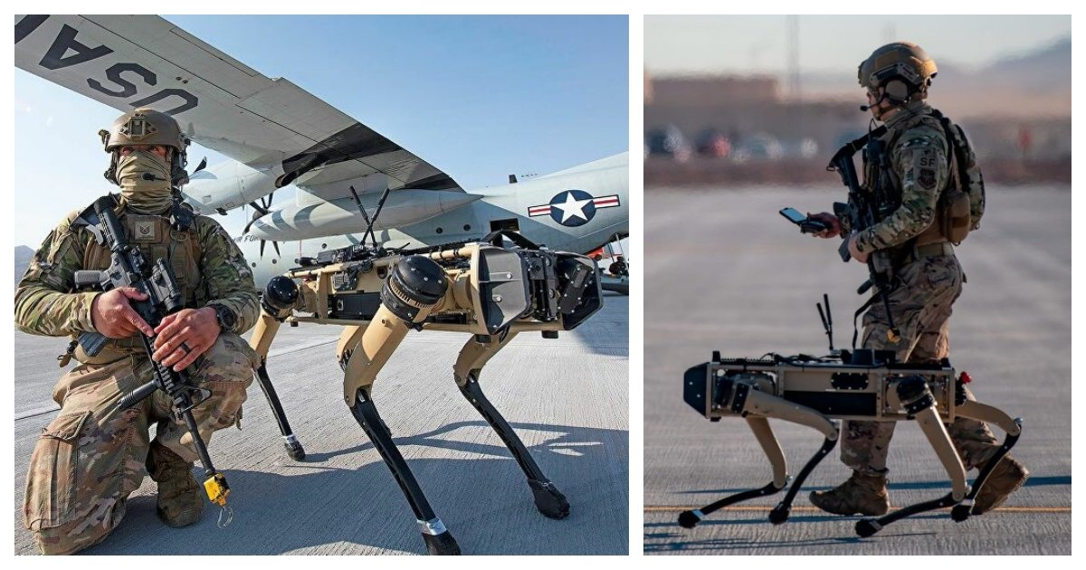 collage 25.jpg?resize=1200,630 - US Air Force Experimenting With Robot Dogs In Defending The Bases