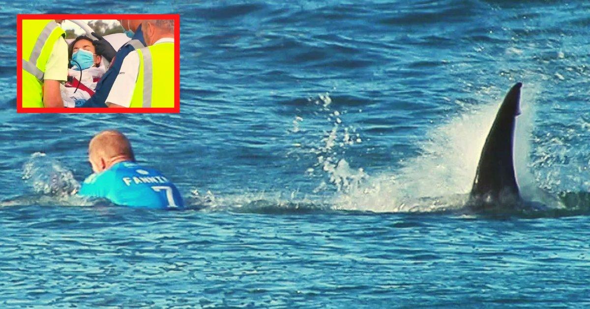 diseno sin titulo 101.png?resize=412,232 - Hombre Entra Al Mar Desesperado Por Salvarle La Vida A Su Mujer Que Fue Atrapada Por Un Tiburón