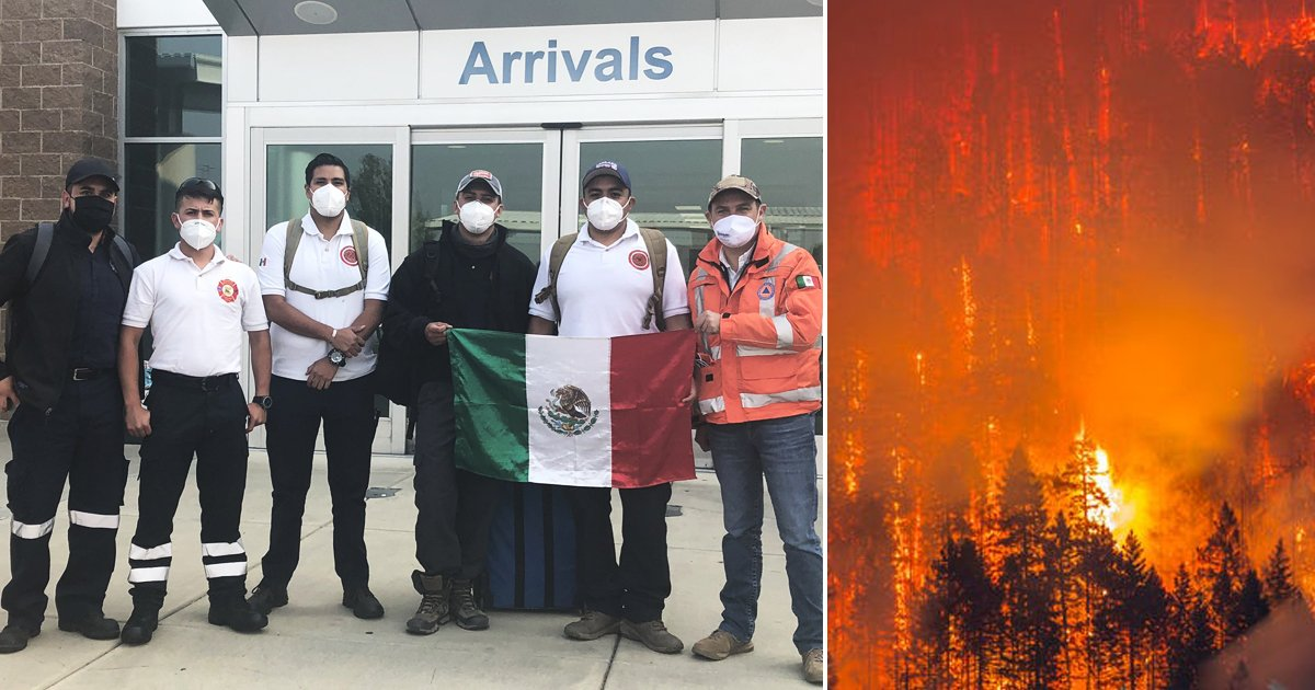 dsgfh.jpg?resize=1200,630 - Mexico Has Sent Volunteer Firefighters To Help Fight Oregon Fires