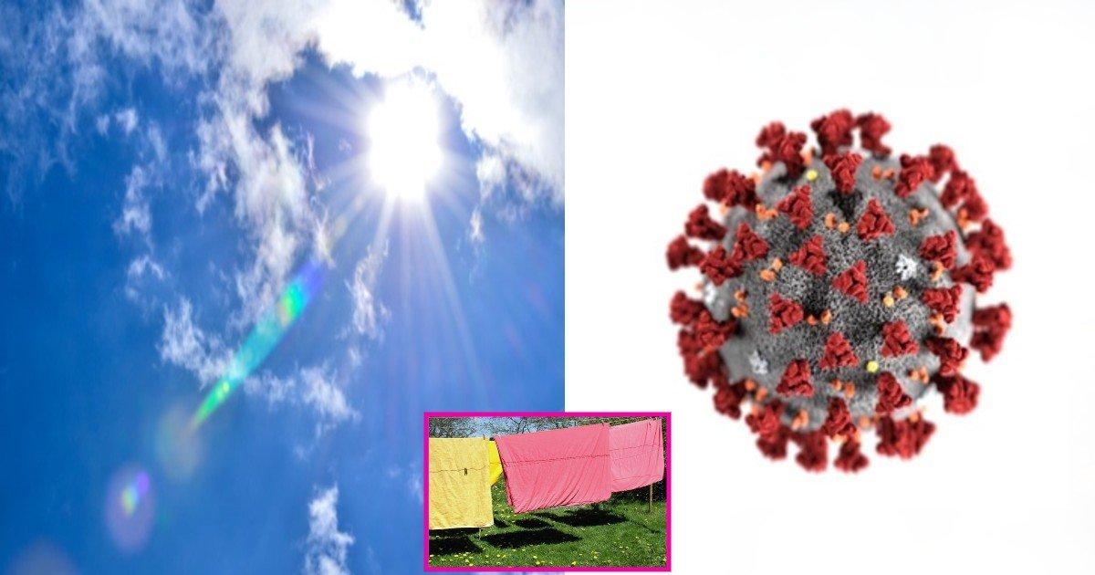 e3858ce3858ce3858ce3858c.jpg?resize=412,232 - ' 단 몇초만에 99%가..' ... 100번 찔러도 죽지 않는 코로나19 바이러스가 자외선에 ' 6초 ' 노출되자 99% 소멸되었다