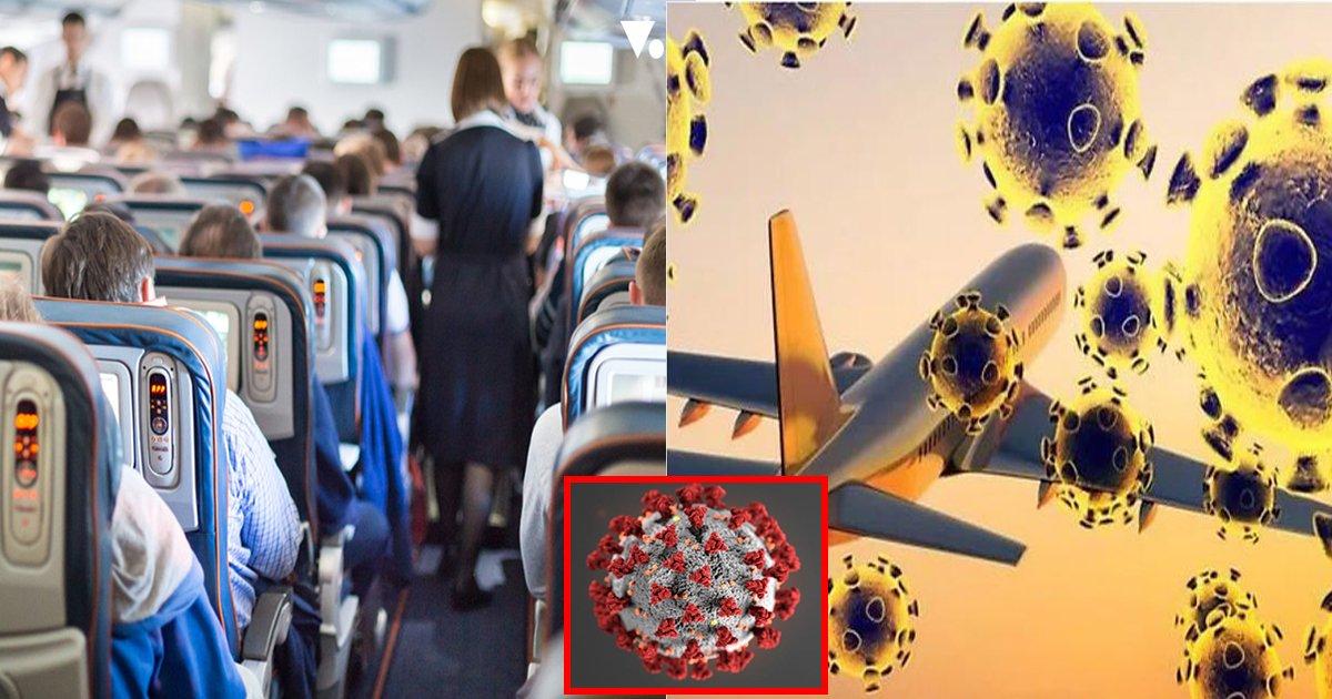 ebb984ed9689.jpg?resize=1200,630 - ' 무더기로 감염..' ... 승무원과 승객이 마스크 없이 대화해 약 200명의 사람들이 코로나19 위험에 처했다