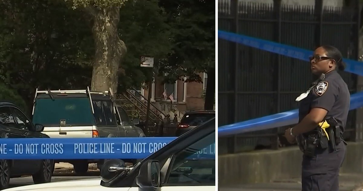 hdgf.jpg?resize=1200,630 - NYC Gun Violence: Man Shot To Death While Walking His Dog