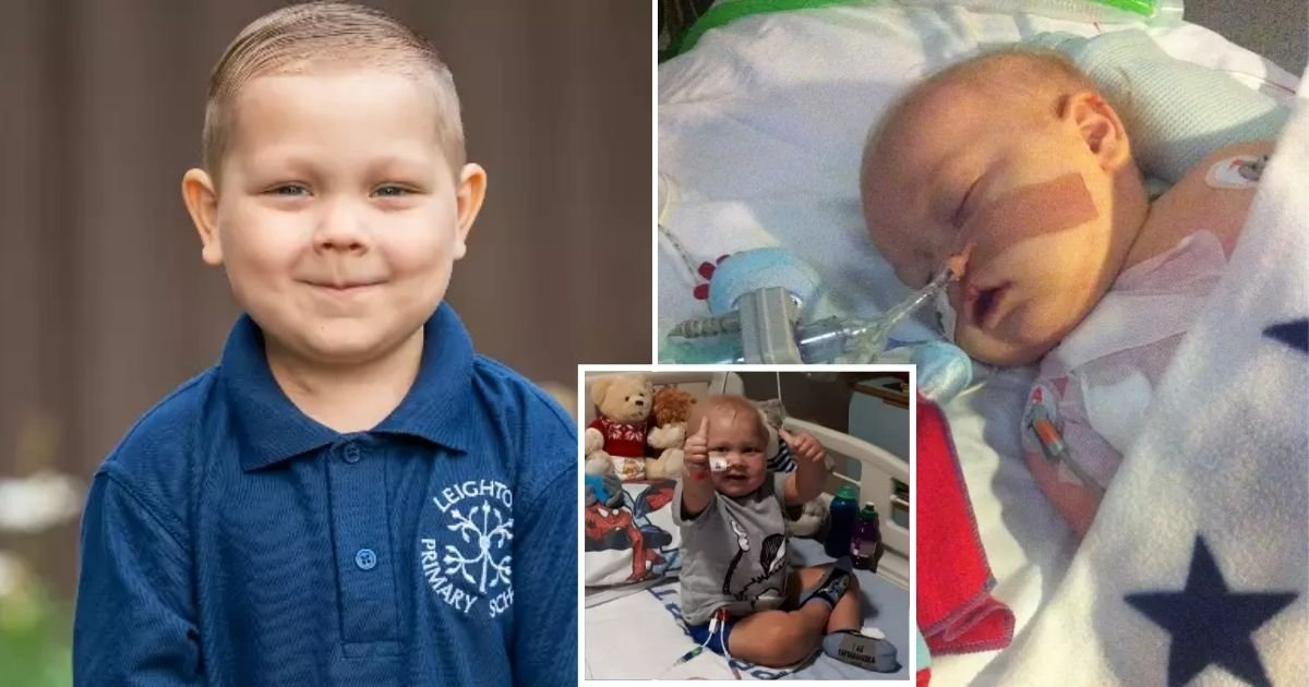 josh6.jpg?resize=412,232 - 4-Year-Old Boy Who Managed To Beat Leukemia Twice Starts His First Day Of School