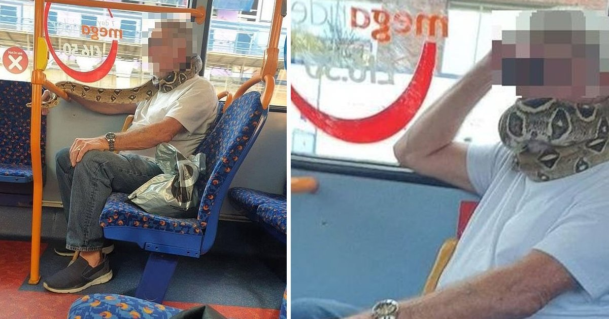 maskk.jpg?resize=1200,630 - Salford Man Shocks Passengers by Wrapping Snake Around His Face in Place of a Face Mask