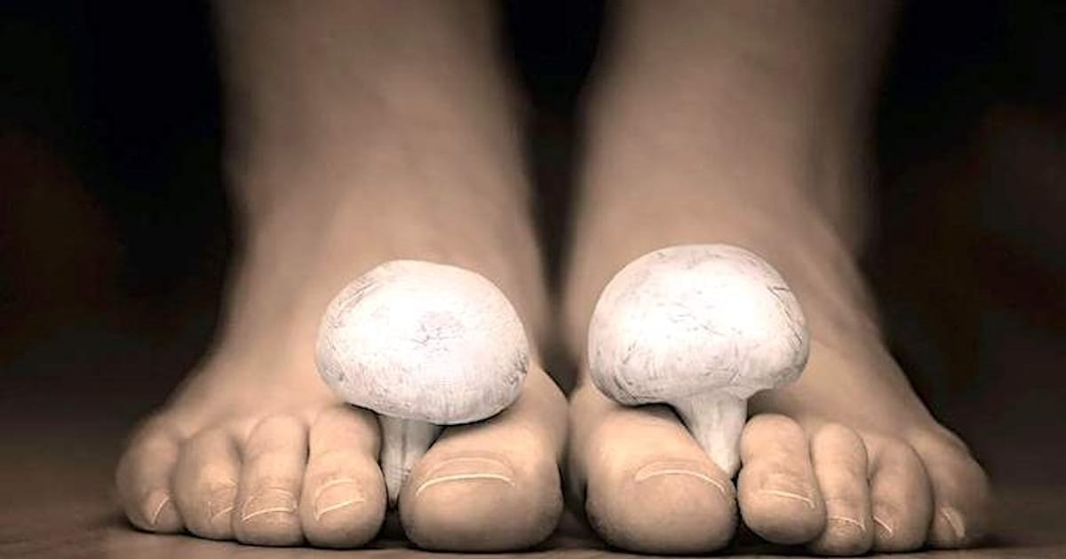 pieds.jpg?resize=412,232 - Mais au fait, pourquoi nos pieds sentent-ils parfois le fromage ?