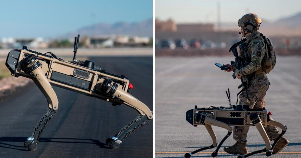 robots.jpg?resize=1200,630 - The US Air Force Has Become the First Military Organization to Use Robot Dogs During Combat Exercises