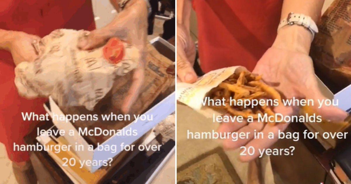 """untitled 5.jpg?resize=412,232 - """"맥도날드에서 샀는데""""...24년 동안 '썩지 않은' 햄버거 공개해 논란이 일고 있다"""