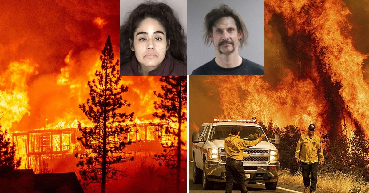 wsadf.jpg?resize=1200,630 - Police Arrest Four People for Willfully Starting Wildfires on the United States West Coast