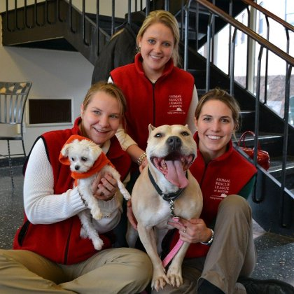 Animal Rescue League of Boston Reviews | Glassdoor
