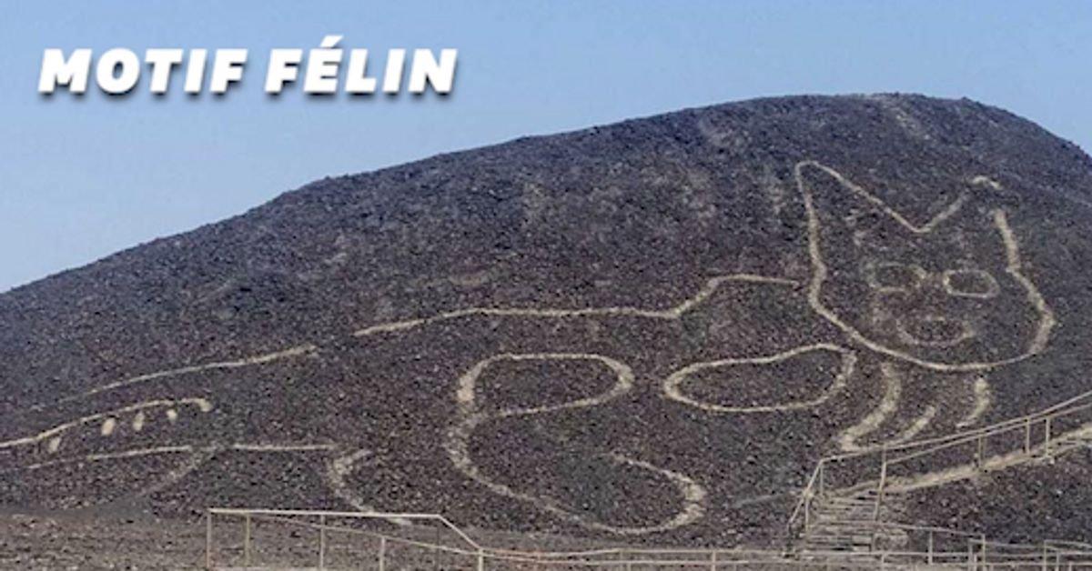 5f8d5e1c2900001e03c6a347.jpeg?resize=1200,630 - Un motif de chat géant découvert sur le site archéologique des lignes de Nazca