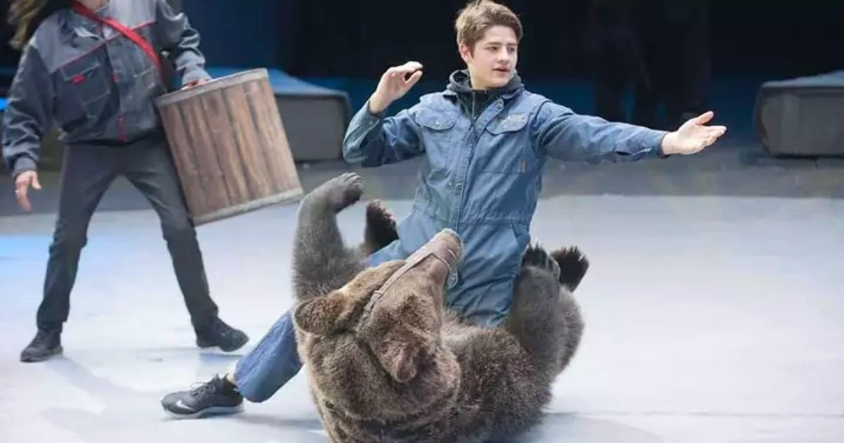 bear5.jpg?resize=412,232 - Man Mauled By A Bear After He Forgot To Take Off His Mask Before Entering The Cage