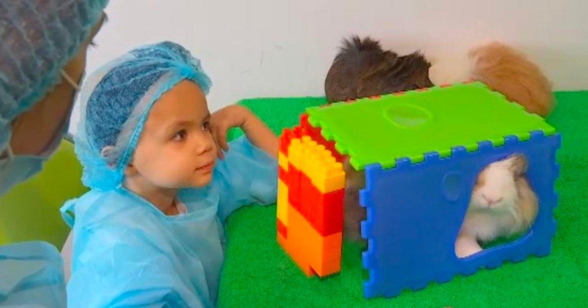 cancer pediatrique.png?resize=412,232 - La zoothérapie, un procédé unique pour apaiser les enfants atteints d'un cancer