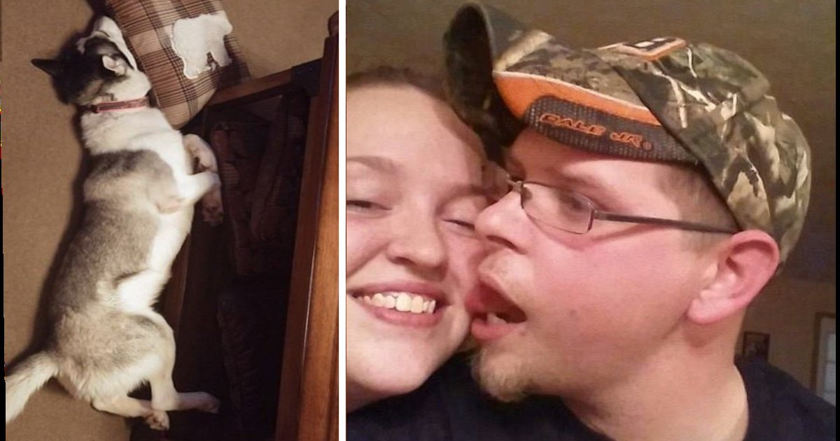 e18486e185aee1848ce185a6 12 1.png?resize=412,232 - Divorcing Couple Facing Jail Time After Abandoning Their Dog And Letting Him Starve