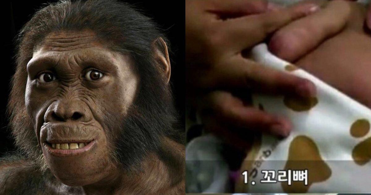 """e27bdd48 f768 442b bdd6 af48221cb0cb e1601962078249.jpeg?resize=1200,630 - """"대박, 개 신기해.. 너도 이거 남아 있냐?""""…일반인들은 절대 모른다는 사람 몸에 남은 '진화의 흔적'10.jpg"""