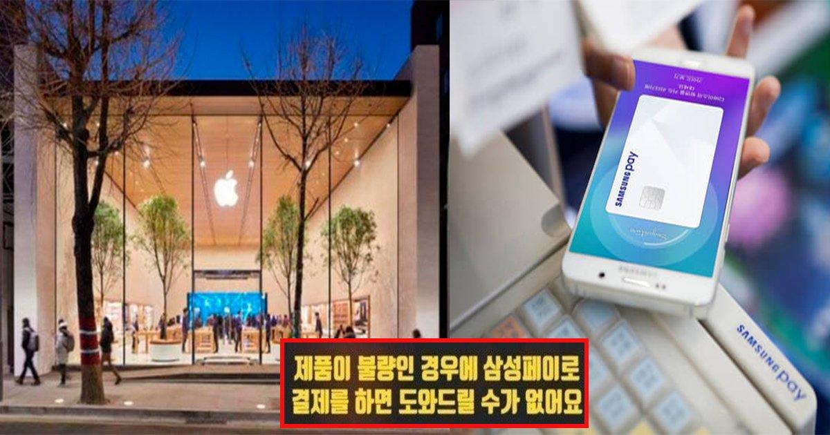 ec82bcec84b1.jpg?resize=1200,630 - ' 블루버드 시스템으로..' ... 애플 오프라인 매장에서 '삼성페이'로는 사고싶은 물품을 결제할 수 없다