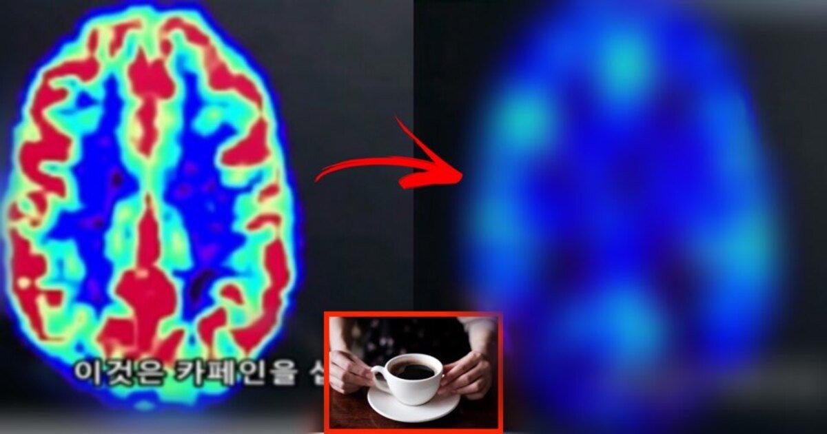 ecbba4ed94bc.jpg?resize=412,232 - 미 연구진들이 밝힌 평일에 매일 커피 마시던 사람이 주말에 안 마시면 두통이 있는 이유