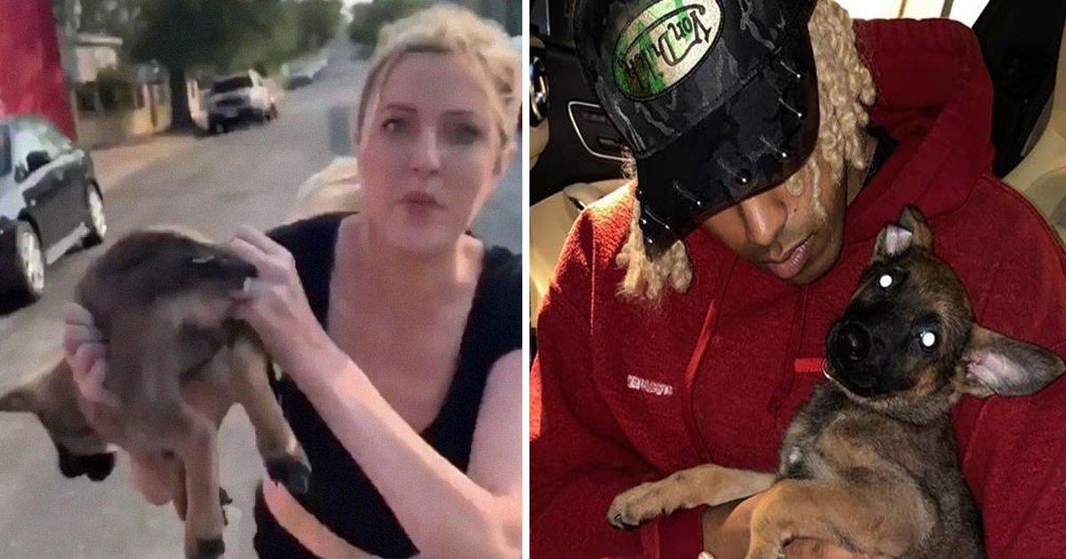 gagda.jpg?resize=412,232 - Black Man Adopts Puppy Thrown At Him During Racially Aggressive Rant