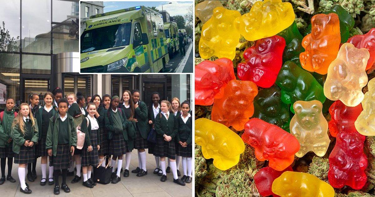 gsdgsdg.jpg?resize=1200,630 - Sweet Treats Gone Wrong As Cannabis Loaded 'Fake' Gummi Bears Land 13 Schoolgirls In Hospital