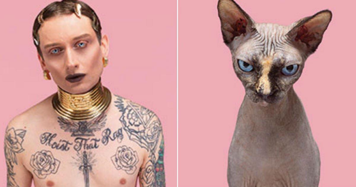 "untitled 82.jpg?resize=1200,630 - ""도플갱어는 사람만 있는 게 아니었다?""...사람과 '도플갱어'인 고양이들의 모습 TOP 15.jpg"