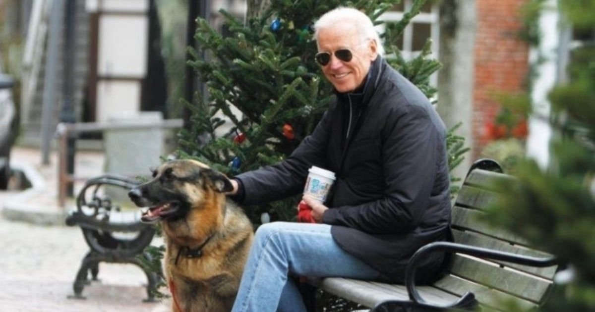 1 59.jpg?resize=1200,630 - President-Elect Joe Biden's German Shepherd Will Be The First Rescue Dog To Live In The White House