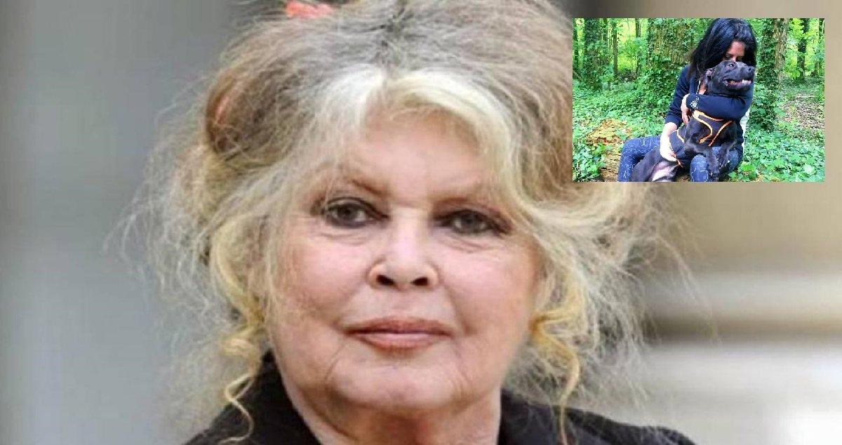 1 curtis2.jpg?resize=1200,630 - Affaire Elisa Pilarski: c'est au tour de Brigitte Bardot de prendre la défense de Curtis
