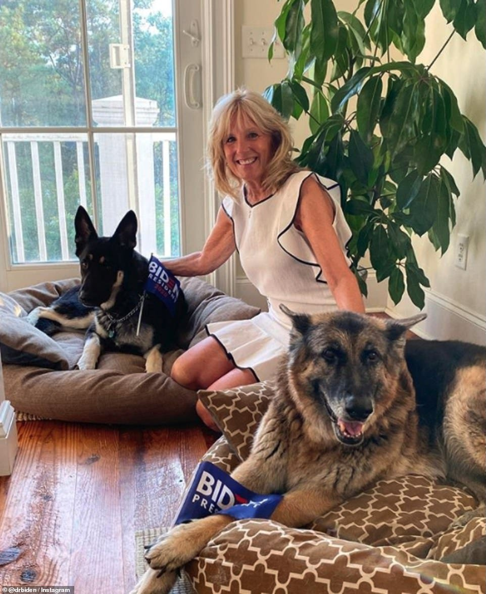 Build Bark Better: Jill Biden cuddles up to Major (left) and Champ (right) in a post on her Instagram page