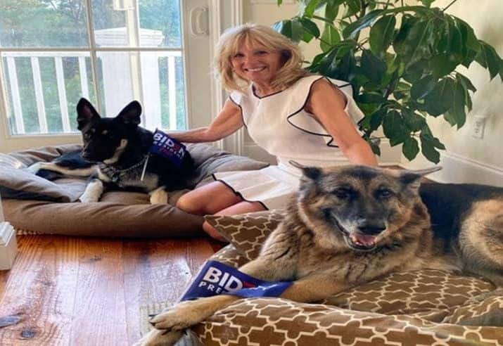 Return of The Pets to White House: Meet The Future First Dogs of US – Champ and Major Biden | India.com