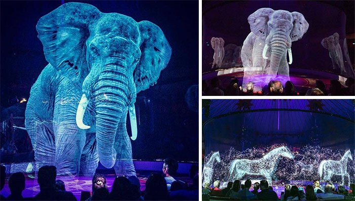 A German Circus Is Using Holograms Instead Of Live Animals For A Cruelty-Free Magical Experience. And It