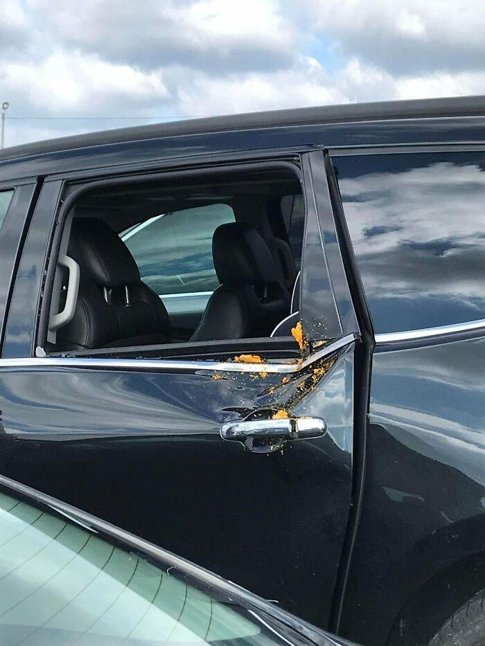 Pumpkin Shot 900 Ft Into A Car At A Local Pumpkin Launching Event