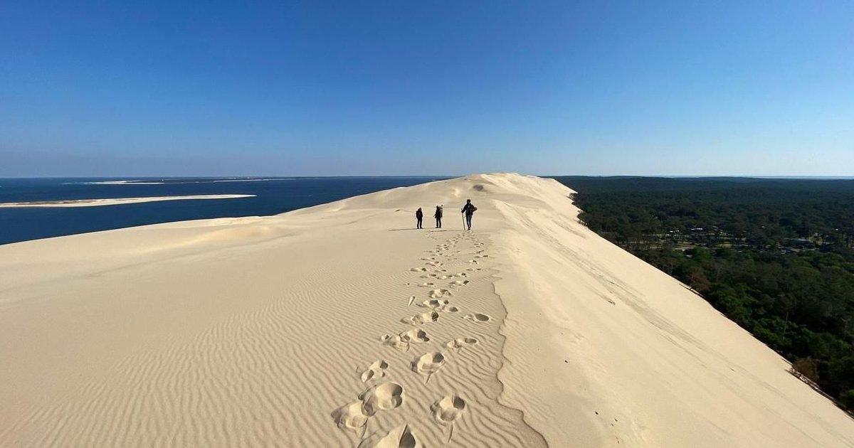 8357367 7376cd92 cc9d 11ea 8ba2 07639775b810 1 e1606457913851.jpg?resize=412,232 - Pollution : neuf tonnes de déchets ramassés sur la Dune du Pilat en deux mois