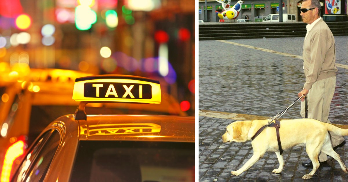 articulosportadas 1 33.png?resize=412,232 - Taxista Es Condenado Por Negarle El Servicio A Un Invidente Acompañado De Su Perro Guía