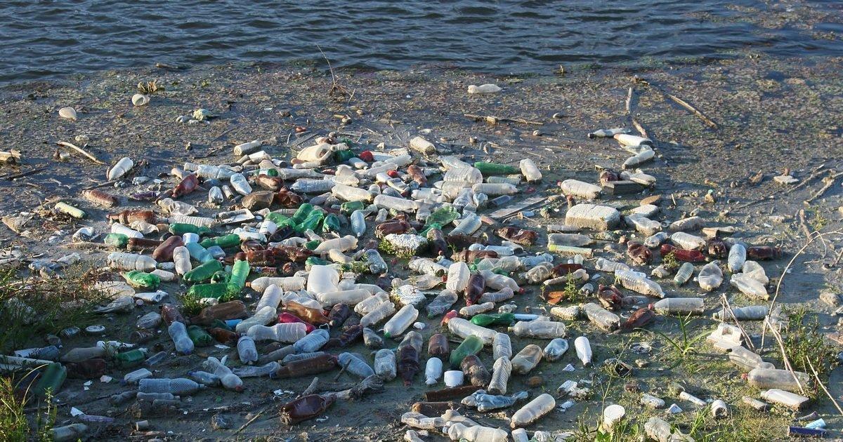 bottles 87342 1280 e1604685499681.jpg?resize=1200,630 - Tecno-Grabber : un système innovant collectant les déchets