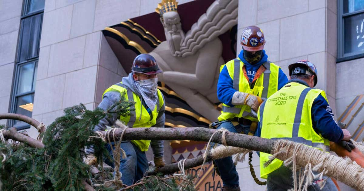 download 4.jpg?resize=412,232 - Workers Spotted Adding Branches To Rockefeller Christmas Tree