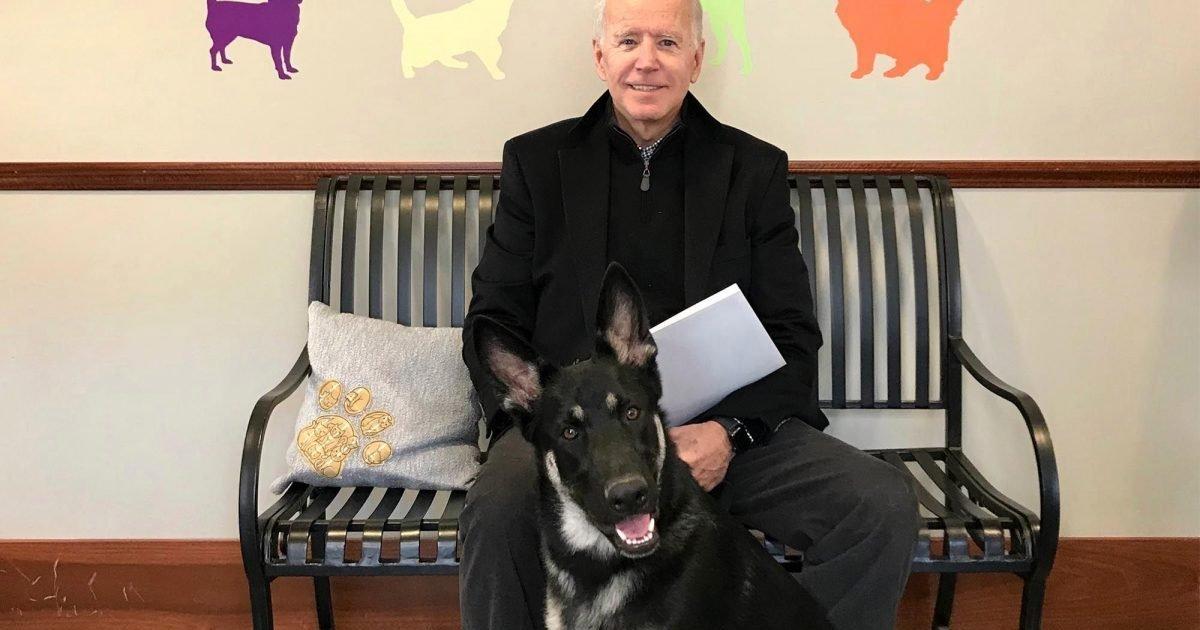 le1 ma 1 e1606736759122.jpg?resize=412,275 - Joe Biden se fracture le pied en jouant avec son chien