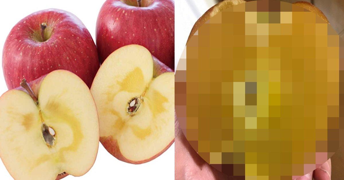 ringo 100.png?resize=412,232 - 日本のある農家で収穫した「はちみつリンゴ」のビジュアルに驚愕!味は一体…?!