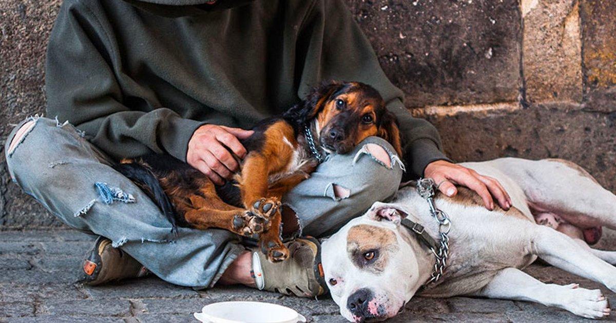 sans abri.png?resize=412,232 - Lyon : des étudiants vétérinaires viennent en aide aux animaux des sans-abri
