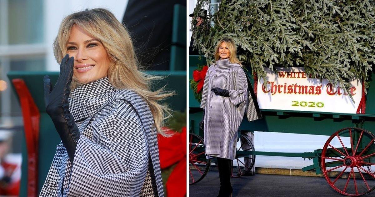 tree6.jpg?resize=1200,630 - First Lady Melania Trump Welcomes 2020 White House Christmas Tree