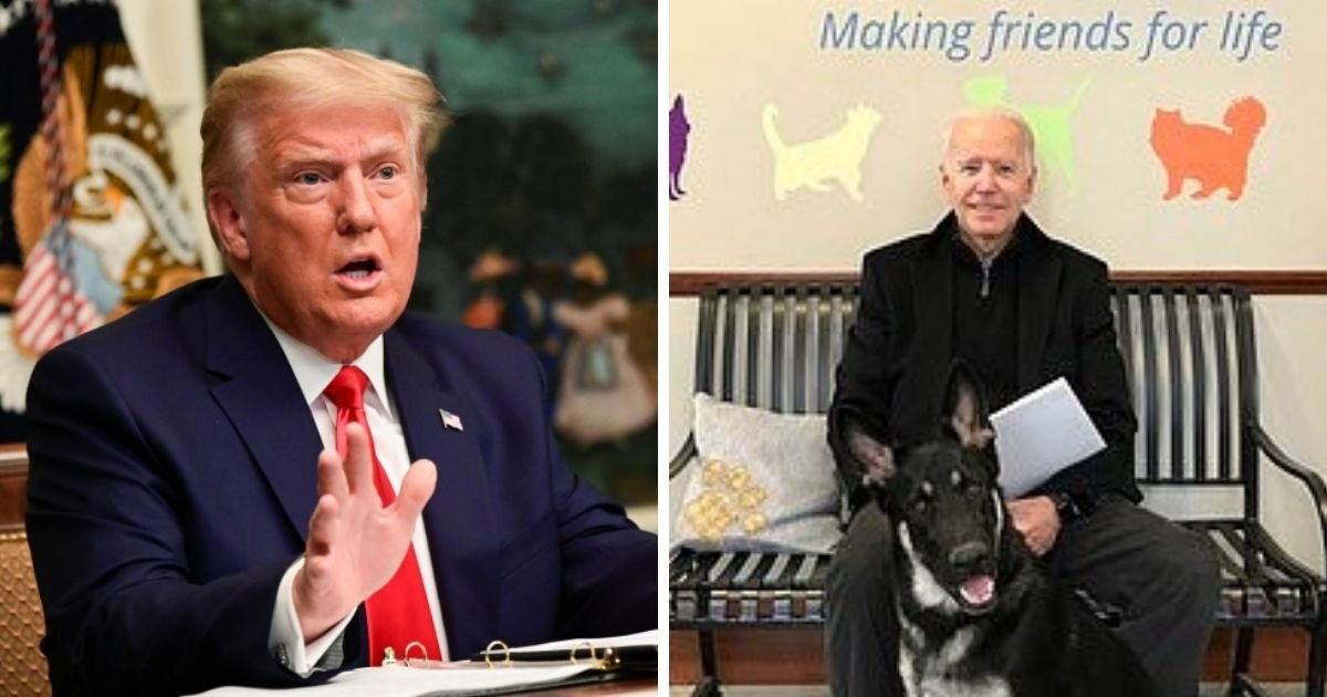 trump 5.jpg?resize=412,232 - President Trump Tells Joe Biden To 'Get Well Soon' After He Fractured His Ankle While Playing With His Dog