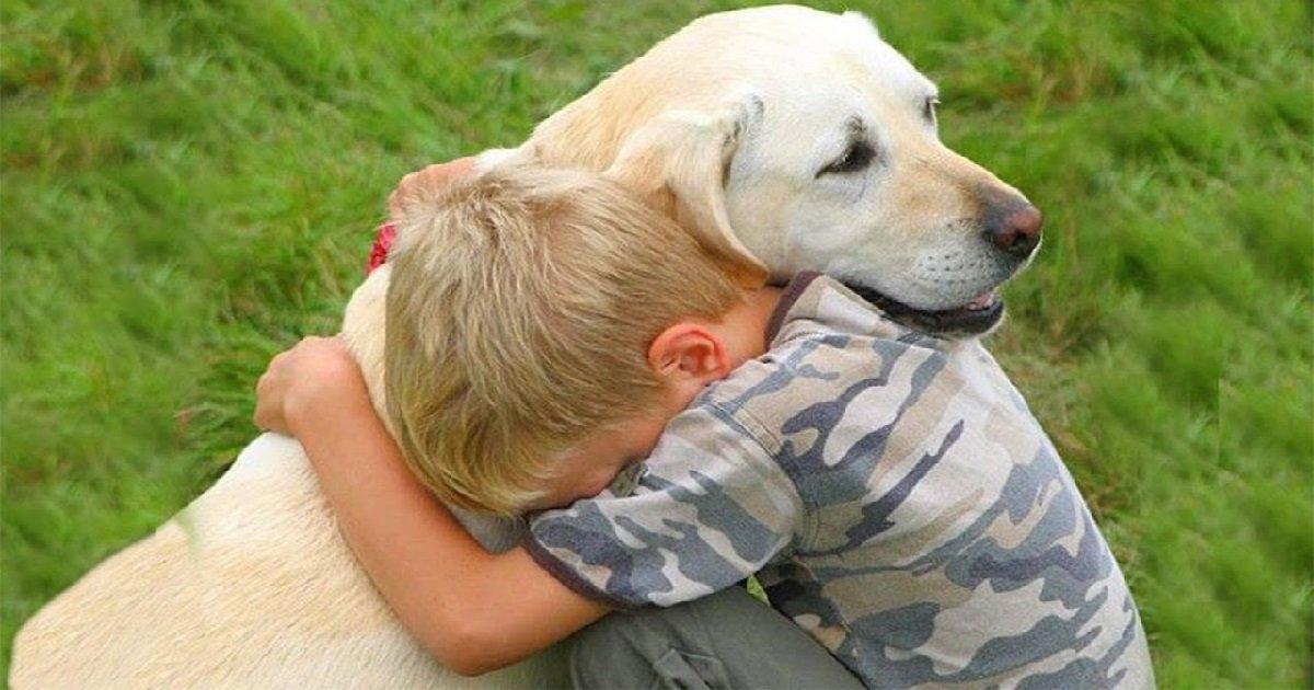 1 chien.jpg?resize=1200,630 - Fait divers: un enfant de trois et son chien ont été abandonnés dans un cimetière