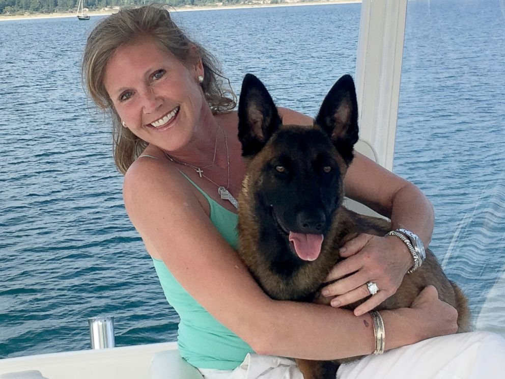 Puppy Falls Overboard, Then Treks 18 Miles To Reunite With Family. – InspireMore
