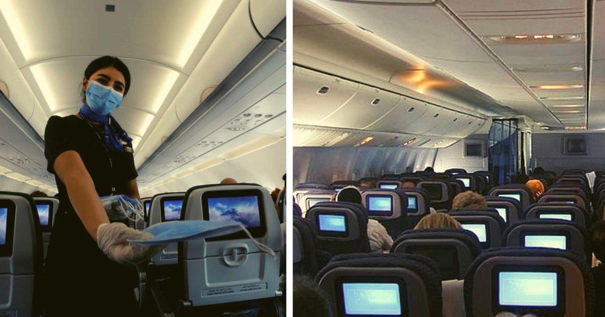 articulosportadas 42.png?resize=1200,630 - El Aire Que Respiramos En Aviones Podría Ser Tóxico