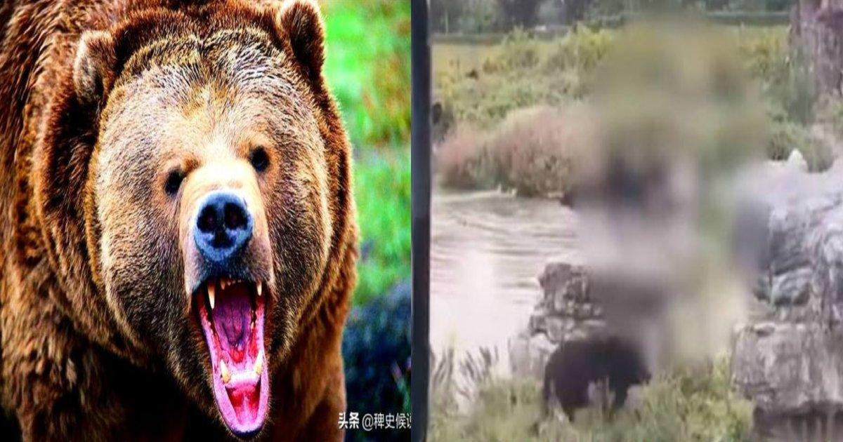 bear kill.png?resize=412,232 - 【衝撃】観覧客の前で熊に襲われた後、引きずられた動物園の飼育士