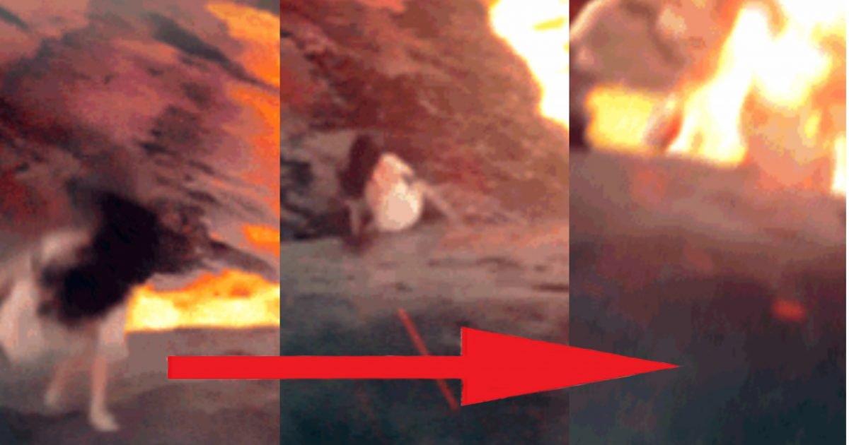 """ef7ce3d4 18f2 448a 864a becb8febb59f e1606807992196.jpeg?resize=412,232 - """"헐, 진짜 미쳤다""""…발 한번 헛디뎌 용암에 빠져 죽은 여대생 (+영상)"""