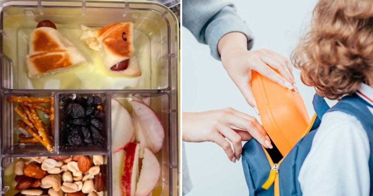 ewrwerg.jpg?resize=412,232 - Mum Shamed For Sharing Her 2-year-old Toddler's Lunchbox