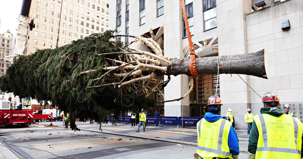 gggsdg.jpg?resize=574,582 - NYC Mayor Urges People To Stay Away And Not To Visit The Rockefeller Christmas Tree