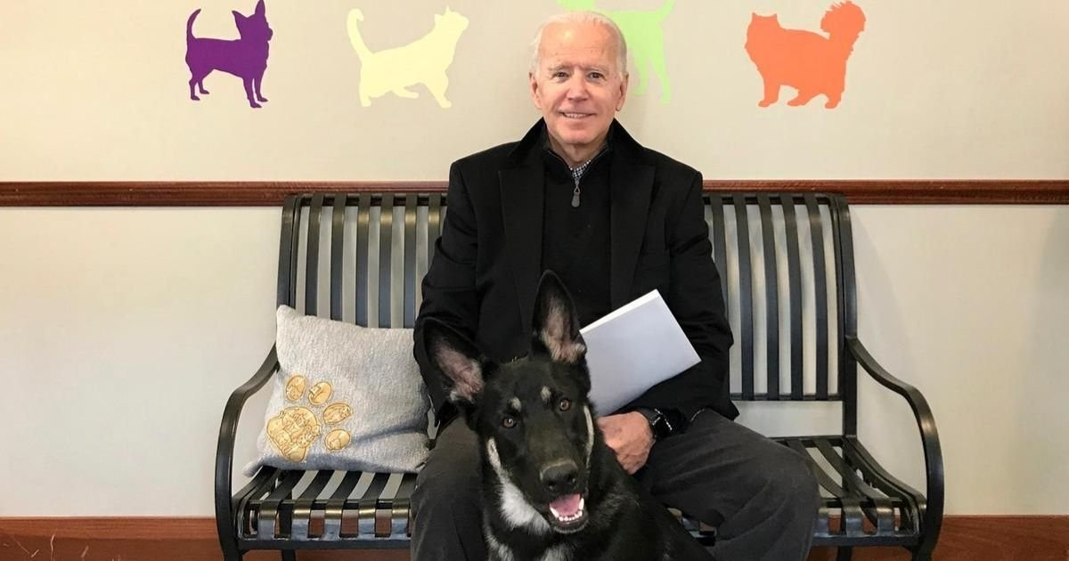 instagram.jpg?resize=412,275 - Joe Biden Fractured His Right Foot From Playing With His Dog